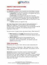 Science - Fifth Grade - Study Guide: Energy and ecosystems