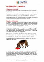 Science - Sixth Grade - Study Guide: Introduction to Animals