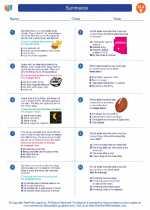 English Language Arts - Fifth Grade - Worksheet: Summarize
