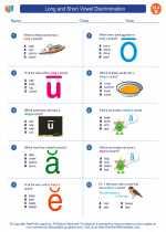 English Language Arts - Second Grade - Worksheet: Long and Short Vowel Discrimination