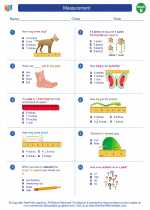 Mathematics - Second Grade - Worksheet: Measurement