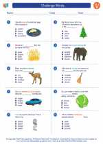 English Language Arts - Second Grade - Worksheet: Challenge Words