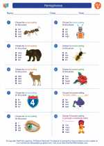 English Language Arts - Second Grade - Worksheet: Homophones