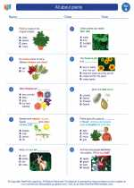 Science - First Grade - Worksheet: All about plants
