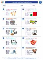 Science - First Grade - Worksheet: Hands-on Lab Skills/Science Inquiry