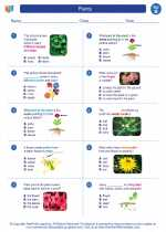Science - Second Grade - Worksheet: Plants