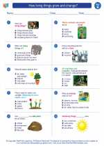 Science - Second Grade - Worksheet: How living things grow and change?
