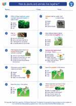 Science - Second Grade - Worksheet: How do plants and animals live together?