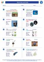 Science - Second Grade - Worksheet: Mammals and birds
