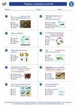 Science - Second Grade - Worksheet: Reptiles, amphibians and fish