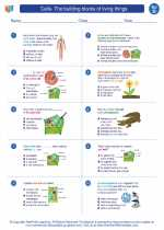 Science - Fourth Grade - Worksheet: Cells- The building blocks of living things