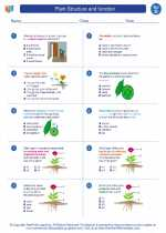 Science - Fourth Grade - Worksheet: Plant Structure and function