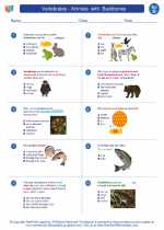 Vertebrates - Animals  with  Backbones