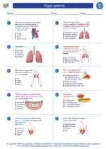 Science - Fourth Grade - Worksheet: Organ systems