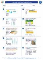 Hands-on Lab Skills/Science Inquiry - 4th grade