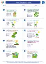 Science - Fifth Grade - Worksheet: Roots, Stems and Leaves