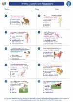 Science - Fifth Grade - Worksheet: Animal Diversity and Adaptations