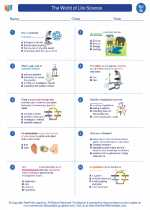 Science - Seventh Grade - Worksheet: The World of Life Science
