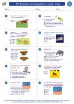 Science - Eighth Grade - Worksheet: The Evolution and interaction of Living Things