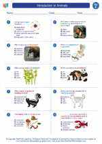 Science - Sixth Grade - Worksheet: Introduction to Animals