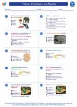 Science - Sixth Grade - Worksheet: Fishes, Amphibians, and Reptiles