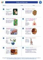 Science - Sixth Grade - Worksheet: Birds and Mammals