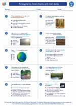 Science - Seventh Grade - Worksheet: Ecosystems, food chains and food webs