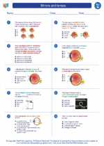 Science - Eighth Grade - Worksheet: Mirrors and lenses