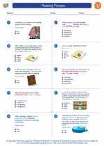 English Language Arts - Seventh Grade - Worksheet: Reading Process