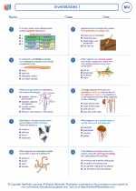 Invertebrates I