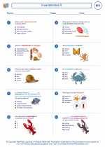 Invertebrates II