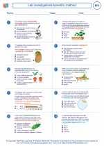 Lab investigations/scientific method