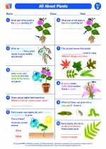 Science - Second Grade - Worksheet: All About Plants