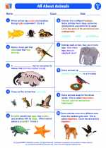 Science - Second Grade - Worksheet: All About Animals