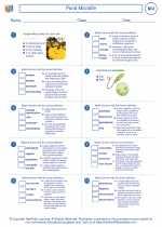 Biology - High School - Worksheet: Pond Microlife
