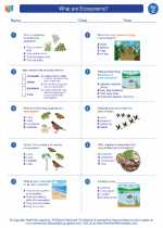 Science - Third Grade - Worksheet: What are Ecosystems?