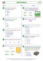 Mathematics - Eighth Grade - Worksheet: Real numbers