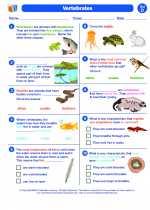 Science - Fourth Grade - Worksheet: Vertebrates