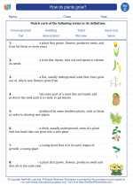 Science - Third Grade - Vocabulary: How do plants grow?