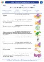 Science - Fourth Grade - Vocabulary: Cells- The building blocks of living things