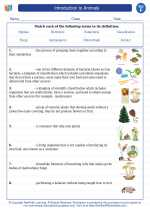 Science - Sixth Grade - Vocabulary: Introduction to Animals