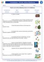 Science - Fourth Grade - Vocabulary: Invertebrates - Animals  without Backbones