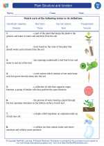 Science - Fourth Grade - Vocabulary: Plant Structure and function