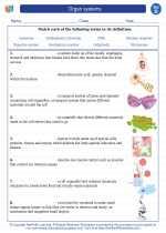 Science - Fourth Grade - Vocabulary: Organ systems