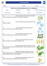 Biology - High School - Vocabulary: Pond Microlife