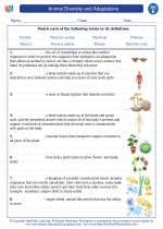 Science - Fifth Grade - Vocabulary: Animal Diversity and Adaptations