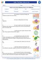 Science - Sixth Grade - Vocabulary: Cells: The Basic Units of Life