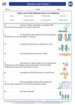 Genetics and heredity I