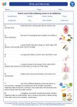 Science - Sixth Grade - Vocabulary: Birds and Mammals