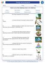Science - Fifth Grade - Vocabulary: Energy and ecosystems
